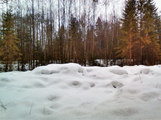 Snowdrifts in Ugra. Part II