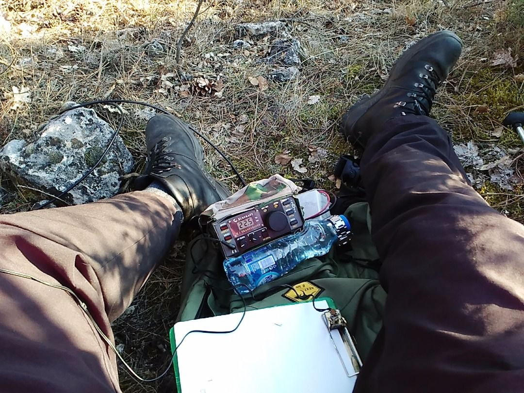QRP activation in a forest 02.01.2017